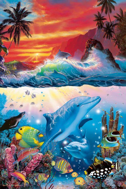 油画海豚图片大全